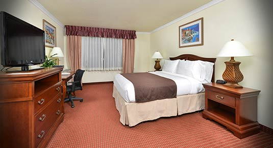 Hotel in Rancho Cordova CA - Spacious King bed
