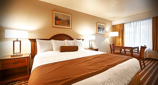 Spacious King Bed - hotel in concord ca